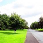 Greenacres park, Oldham
